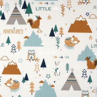 Little Adventure